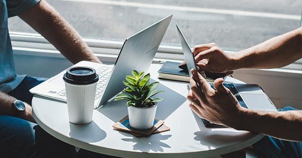 reunión, trabajo, ordenador, software, café, planta, mesa, empresario, negocios, emprendedor